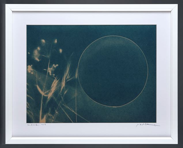 Picture of Cyanotype Refª. CNT 001