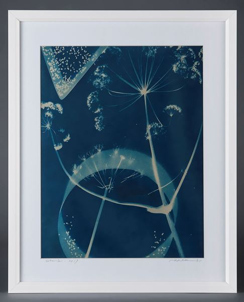 Picture of Cyanotype Refª. CNT 005