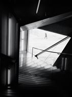 Picture of Fotografias sem montagem